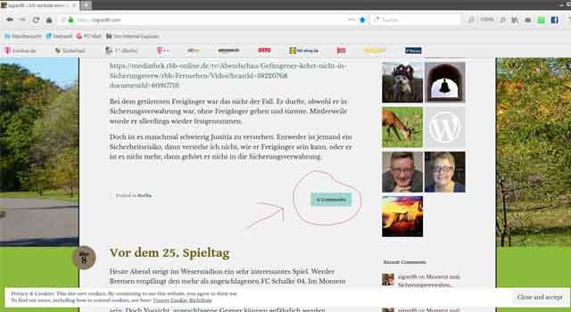 Wordpress1.jpg